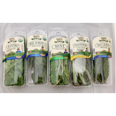 Temperos MINT POULTRY HERBS BAY LEAVES CILANDRO