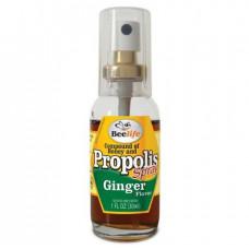 Composto Extrato de Propolis, mel e gengibre em Spray Beelife 30ml