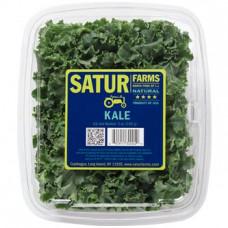 Kale Satur Farms 142 g