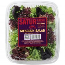 Mesclun Salad Satur Farms 142 g