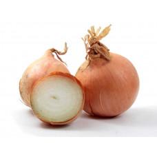 Onion Spanish 1 Lb